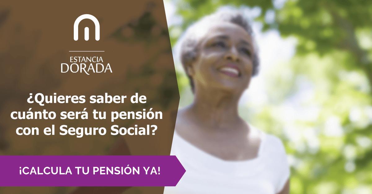 Calcula tu pensión del Seguro Social