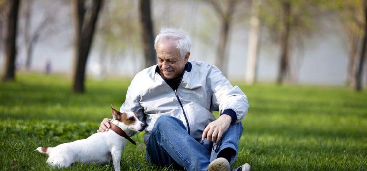 ¿Cómo mejorar la calidad de vida en la jubilación?