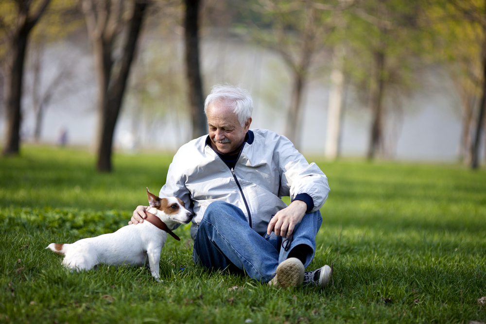 mejorar la calidad de vida en la jubilación